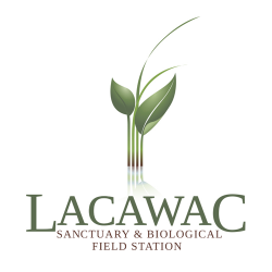 Lacawac Sanctuary and Field Station